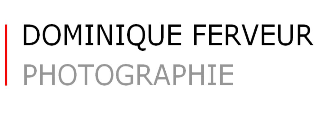 Dominique FERVEUR